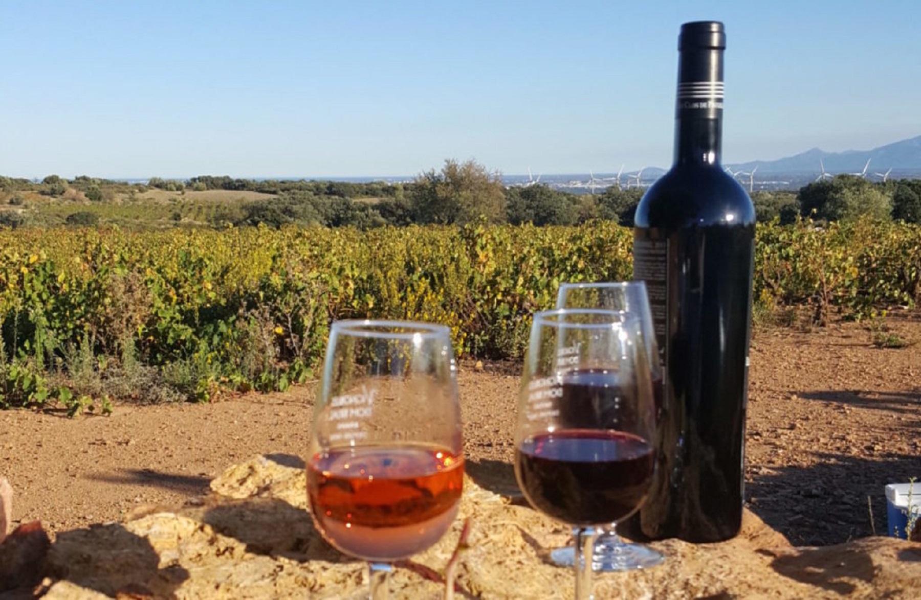 Comment faire son vin