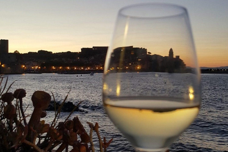 Vignoble de Collioure